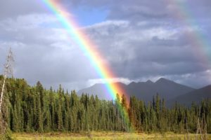 rainbow-436183_960_720